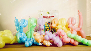 260 STD modeling baloon ASSORTED (25 шт) opt-show
